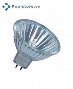Bóng đèn 50W - 12V